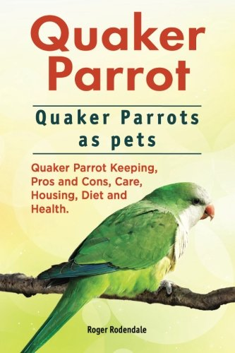 Quaker Parrot. Quaker Parrots as pets. Quaker Parrot Keeping, Pros and Cons, Care, Housing, Diet and Health. (Quaker Shop)