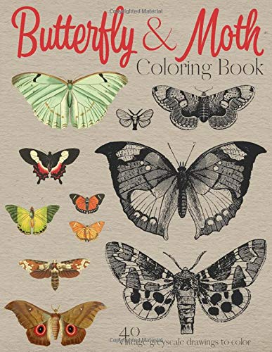 Butterfly Moth Coloring Book 40 Vintage Greyscale Drawings To Color 18th Century Lepidopterology Study Sketches Books J And I 9798638951672 Amazon Com Books