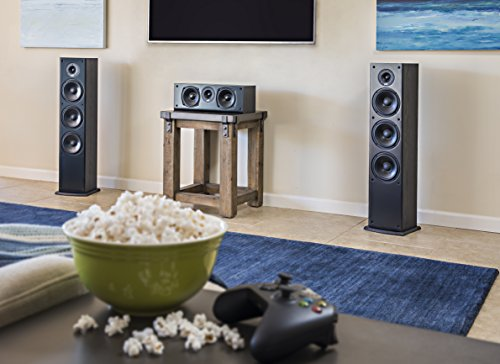 Polk Signature Series S50 Floor Standing Speaker - American HiFi Surround Sound for TV, Music, and Movies | Stylish Looks, Big Sound | Bi-wire and Bi-amp | Detachable Magnetic Grille included