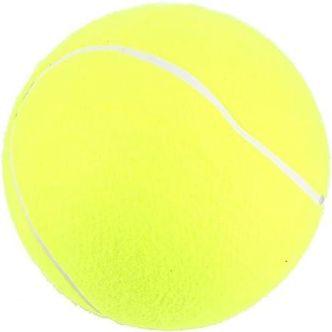 Zerone Pelotas de tenis para mascotas, pelota de juguete para ...