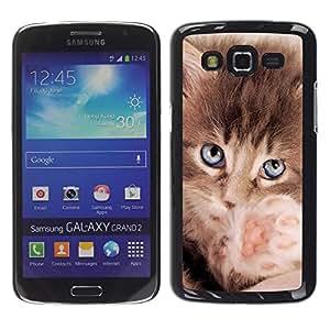 Be Good Phone Accessory // Dura Cáscara cubierta Protectora Caso Carcasa Funda de Protección para Samsung Galaxy Grand 2 SM-G7102 SM-G7105 // Maine Coon Kitten Small Feline