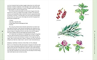 The Womans Herbal Apothecary: 200 Natural Remedies for ...