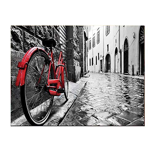 SATVSHOP Art Wall painting-48Lx24W-Bicycle Classic Bike on Cobbl Tone Street in Italian Town Leisure Charm Artistic Photo ed Black and White.Self-Adhesive backplane/Detachable Modern Decorative Art. ()