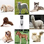 PetExpert Dog Clippers Cordless Dog Grooming Clippers Kit Rechargeable Quiet Pet Hair Clippers Trimmer with 10 Dog Grooming Tools for Dogs, Cats and Other Pets