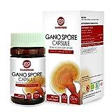 Organic Ganoderma Lucidum Reishi Mushroom Lingzhi Spore Capsules with High Potency Polysaccharide & Triterpenes,100% Herbal Dietary Supplements Supports Immume Health,Longevity&Vitality Review