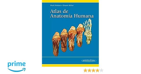Atlas de Anatomía Humana: Amazon.es: Mark Nielsen: Libros