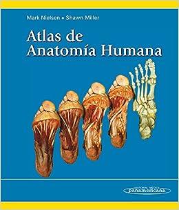 Atlas De Anatomía Humana por Mark Nielsen epub