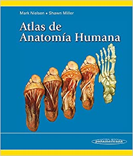 Atlas de Anatomía Humana: Amazon.es: Nielsen, Mark: Libros