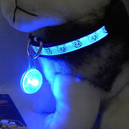 Spotlit Circular Quality Durable Lighting