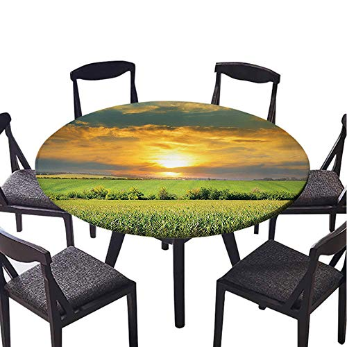 SATVSHOP Round table-50 Round-for Indoor, Outdoor,Farm House Corn Field and Sunrise on Summer Sky Natural Paradise Pasture Mourning View Yellow Green.(Elastic Edge)