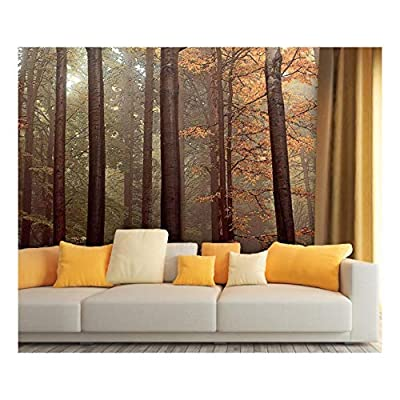 Wonderful Visual, Large Wall Mural Oil Painting Style Landscape with Tall Trees in Forest Vinyl Wallpaper Removable Wall Decor, Made to Last