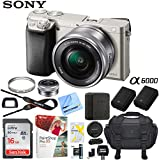 Sony Alpha a6000 Mirrorless Digital Camera 24.3MP SLR (Black) w/16-50mm Lens ILCE-6000L/B with Extra Battery Case 16GB Memory Deluxe Pro Bundle (Essential 16GB Kit, Silver)
