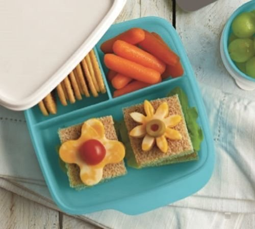 TUPPERWARE New LUNCH-IT DIVIDED CONTAINER 3 Sections! You Choose Color! (Fuchsia Kiss) (6 Space Cold Food Pan)