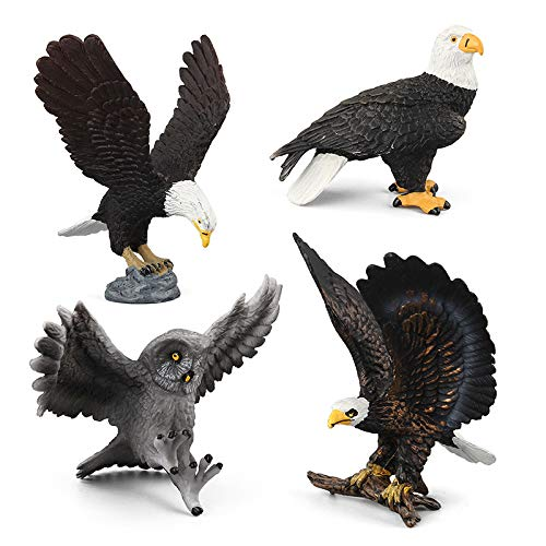 - Warmtree Simulated Bald Eagle Owl Model Realistic Figures Toys Plastic Action Figure for Kids' Collection Science Educational Toy, Set of 4
