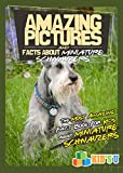 Amazing Pictures and Facts About Miniature Schnauzers : The Most Amazing Fact Book for Kids About Miniature Schnauzers (Kid's U)