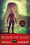 Book cover from Blood of Elves (The Witcher (1)) by Andrzej Sapkowski
