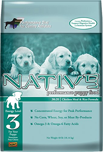 native dog supply