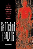 Santeria Healing : A Journey into the Afro-Cuban World of Divinities, Spirits, and Sorcery, Wedel, Johan, 0813026946