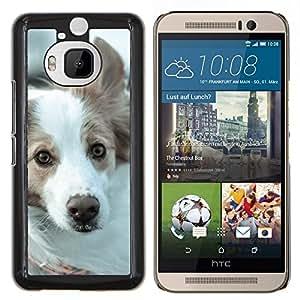Cubierta protectora del caso de Shell Plástico || HTC One M9+ M9 Plus || Border collie Husky Corgi perro de mascota canina @XPTECH