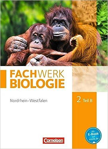 FachWerk Biologie 2 B