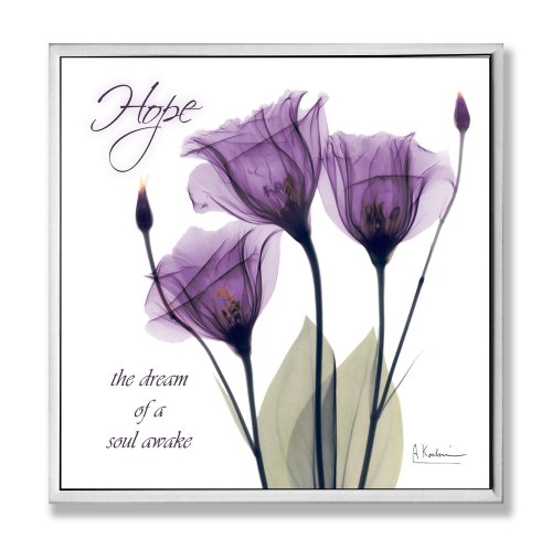 Amazon.com: Stupell Home Décor Hope Purple Flower X Ray Art Wall Plaque, 12  X 0.5 X 12, Proudly Made In USA: Home U0026 Kitchen