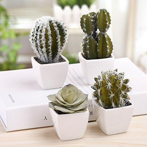 Set of 4 Miniature Artificial Succulent & Cactus Plants in Square White Ceramic Pots