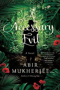 A Necessary Evil: A Novel (Wyndham & Banerjee Series)