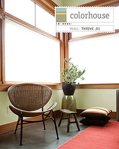 Inspired Eggshell Interior Colorspot Paint Sample, Thrive .01, 8-oz