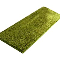 Modern Shaggy Soft Area Rug Solid Non-Slip Extra Long Mat for Bedroom Living Room Home Decoration Green