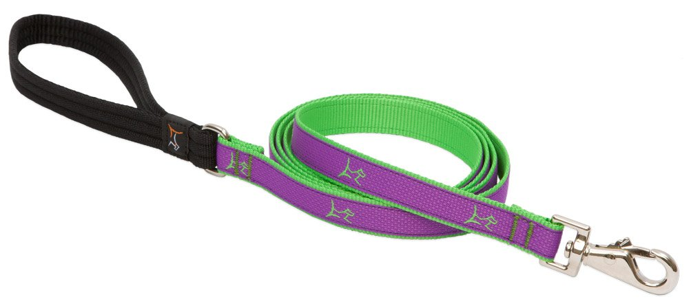 6' Lupine 90309 3 4-Inch Wide Padded Handle Leash, 6-Feet, Hampton Purple