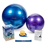 Nilly Yoga & Pilates Exercise Ball Home Gym Kit (65cm +30cm 4-Piece Set) Incl. 2 Fitness Balls ( Big & Small ) - Air Pump - Resistance Band | Promote Strength - Stability Balance with Low-Impact Support