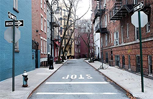 LFEEY 7x5ft Manhattan City Street Backdrop for Photography West Village New York Buildings Downtown NYC Alley Guide Board Stop Parking Background Photo Studio Props]()