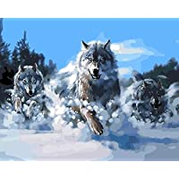 Wowdecor Paint by Numbers Canvas Kits for Adults Beginner Kids, DIY Acrylic Number Painting - Snow Mountain Three Wolves 16x20 inch - Wall Art Digital Oil Painting Home Decor (Framed)