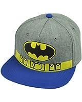 Batman Snapback Flat Bill Grey Blue Hat Cap Super Hero DC Comic Books Cartoon