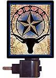 Night Light - Texas - Star and Longhorn