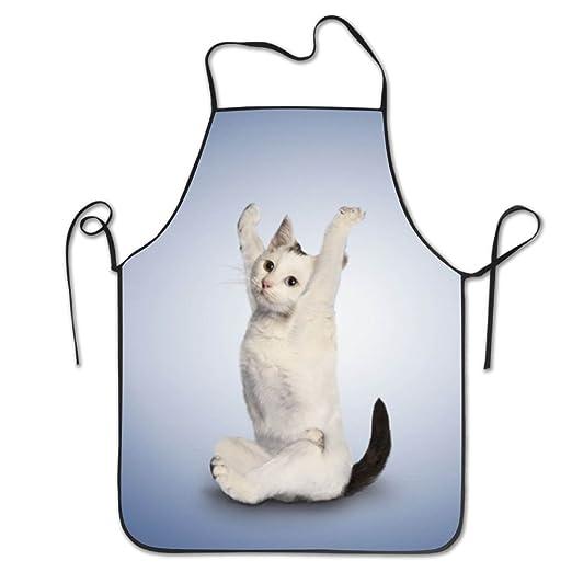 Bobimu - Delantal de cocina, para cocina, yoga, gato, cocina ...