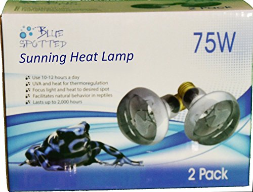Sunning Heat Lamps, 75 Watt (1 Value Pack) For Use With Terrariums And Provided A Basking Lamp Reptiles, Amphibians, Small Animals, Birds, And Farm Animals by Blue Spotted