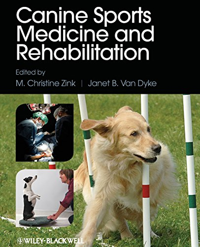 Canine Sports Medicine and Rehabilitation by M Christine Zink