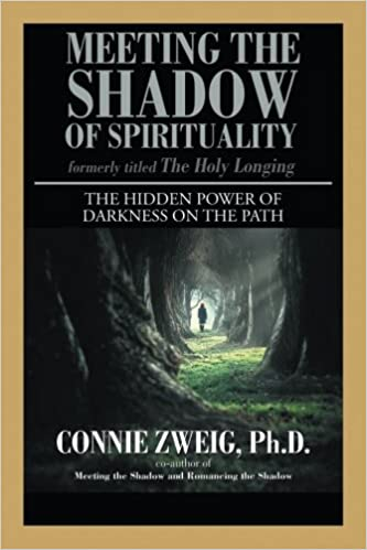 Meeting the Shadow of Spirituality by Connie Zweig