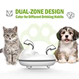 DOG CARE Cat Water Fountain - 84 Oz/2.5L NOAH Pet