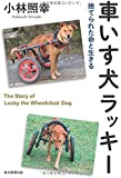 車いす犬ラッキー 捨てられた命と生きる