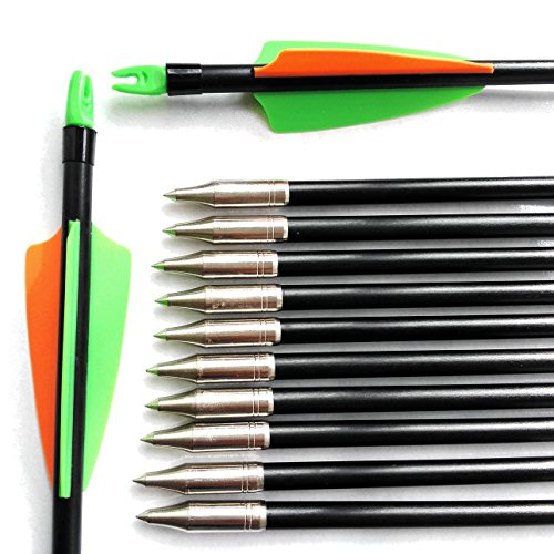1 Dozen Prunus Fixed Tips Fiberglass Arrows 31 inch with Adjustable Nocks and Green Orange Vanes as Targeting Practice Hunting Arrows for Recurve and Compound Bows