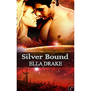Silver Bound Audiobook