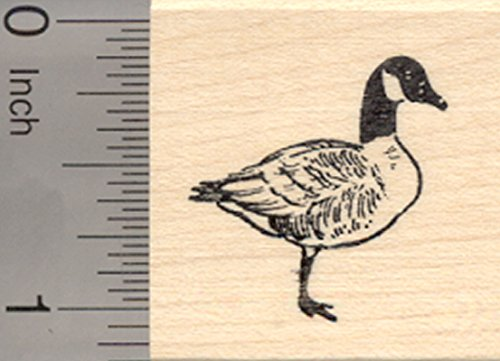 Canadian Goose Rubber Stamp, Small