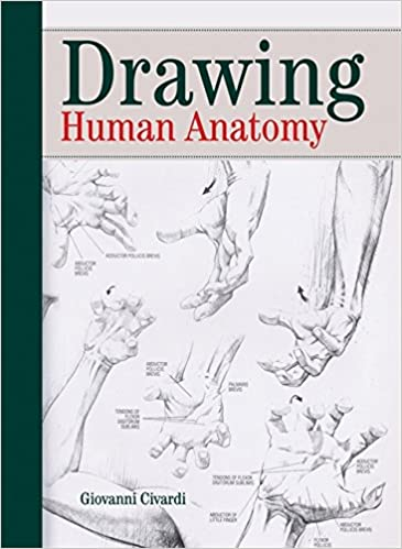 Buy Drawing The Human Anatomy Book Online At Low Prices In India
