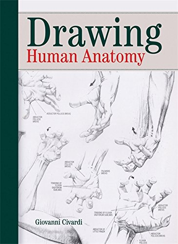 Drawing Human Anatomy: Giovanni Civardi: 9780289800898: Amazon.com ...