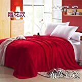 Znzbzt small blanket afternoon nap office single cute mini cover and small blankets winter student adult thick warm ,150x200cm [thick package of health, Red China Red
