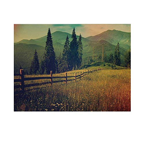 Nature Photography Background,Mountain Valley with Fir Tree Flower Field Fences Rural Panorama Decorative Backdrop for Studio,5x3ft
