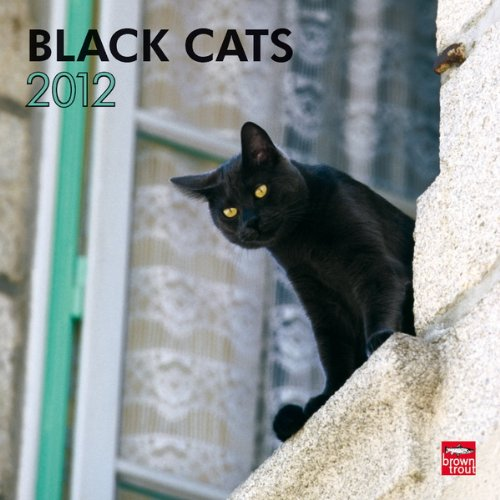 Black Cats 2012 Square 12X12 Wall Calendar - Cats 2012 Calendar