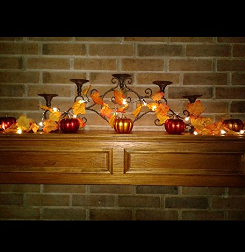 Gogo shopping2 AA Battery Powered Lighted Fall Garland – 8.2 Feet - Shades of Orange and Yellow Leaves with 20 Lights - Perfect Fall/Thanksgiving Decoration (Warm (Halloween Home Decorations To Make)